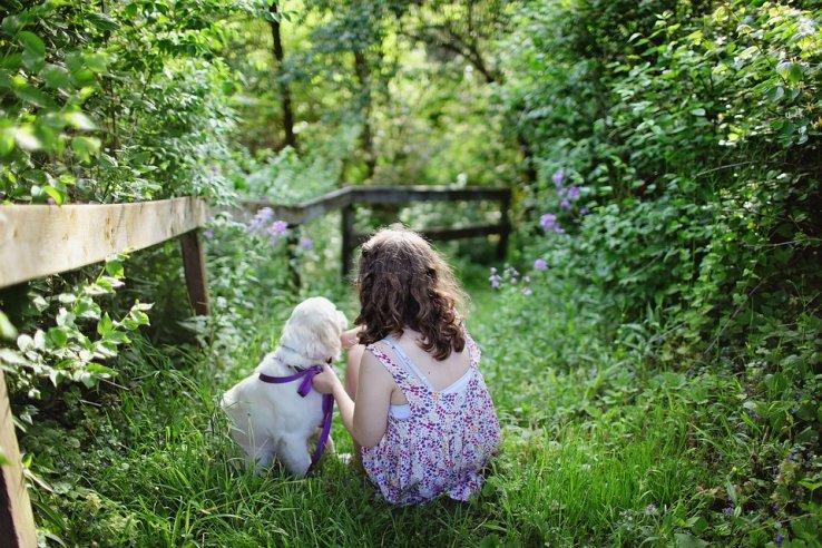 Quelle race de chien calme et gentille choisir avec des enfants ?